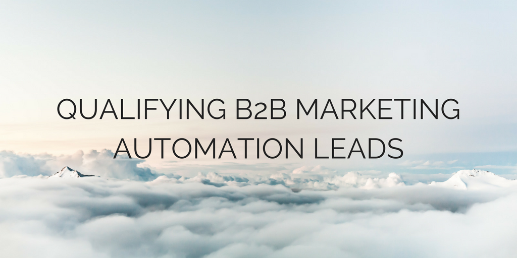 B2B MARKETING AUTOMATION LEADS.png