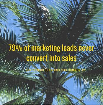 B2B Lead Generation 79% of Leads Never Convert