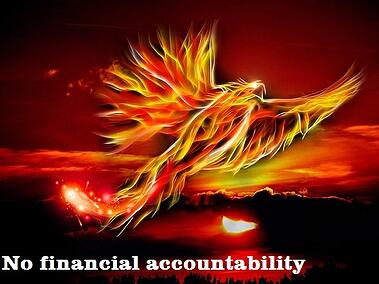financial accountability marketing roi