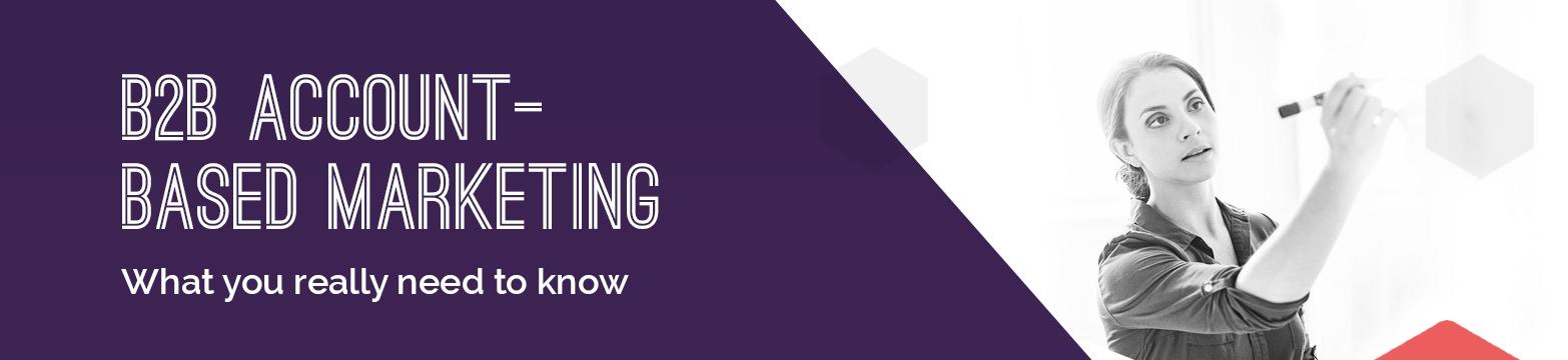 B2B Account Based Marketing Infographic