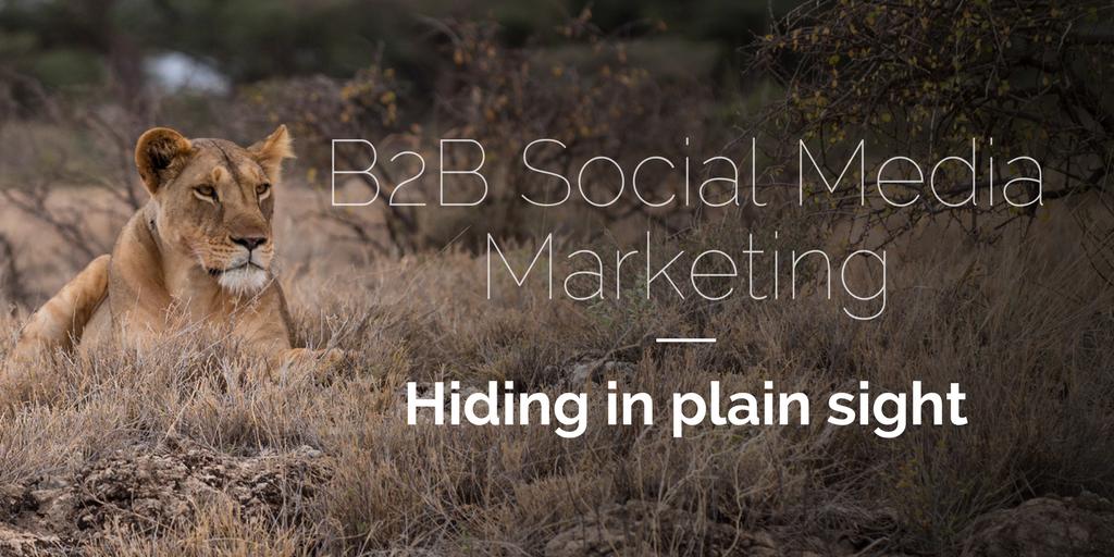 b2b-social-media-marketing-native-advertising (2).png
